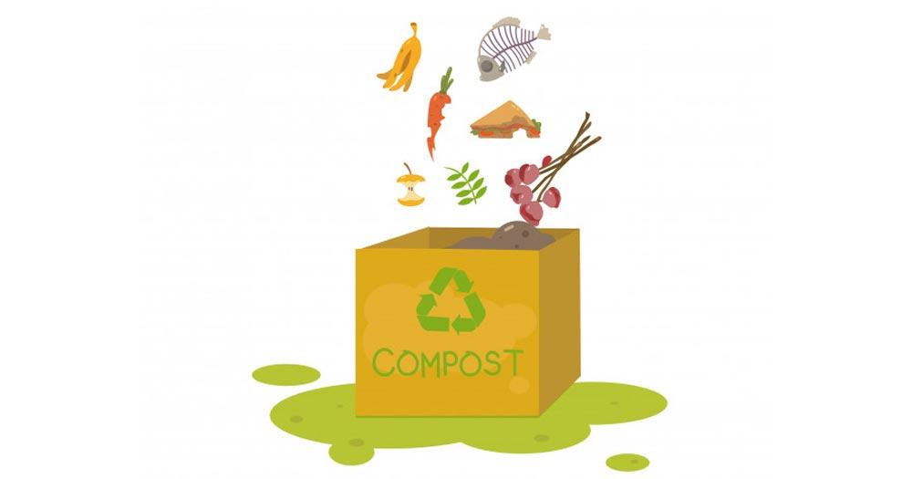 Phân hữu cơ không gây ô nhiễm môi trường